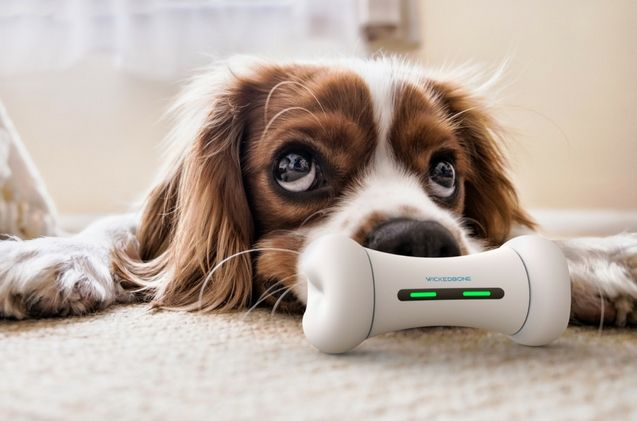 Kickstarter S Wickedbone Is A Smart Interactive Dog Toy For Busy