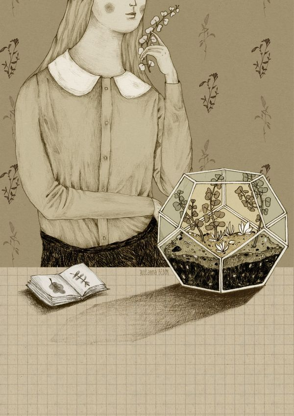 Julianna Bíbor illustration Botanical terrarium