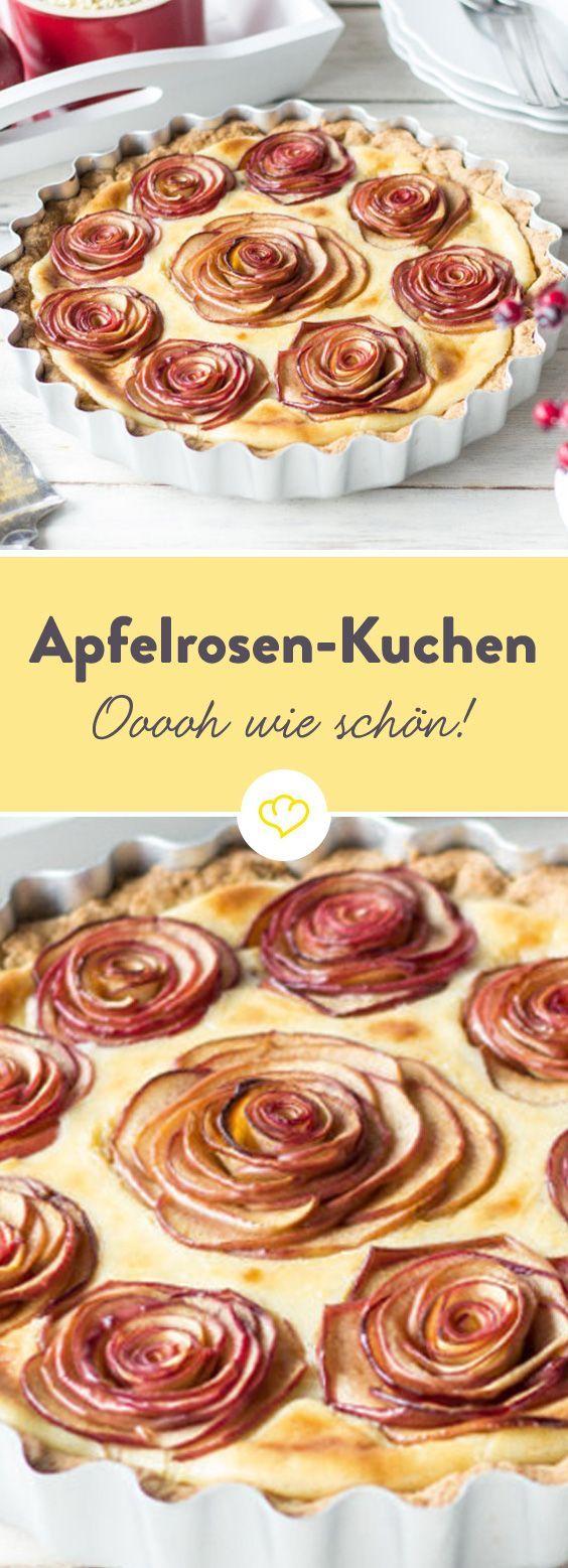 So schön können Äpfel sein. So schön kann Kuchen sein. So schön kann Apfelkuchen sein. Die Äpfel zu Rosen gelegt und auf Pudding gebettet. (Baking Desserts Pastries)
