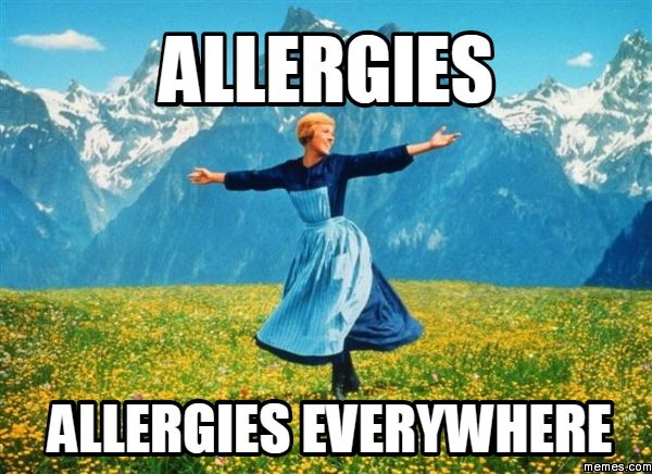 Funny Quotes About Allergies: 40 Best Allergies Suck Images On Pinterest