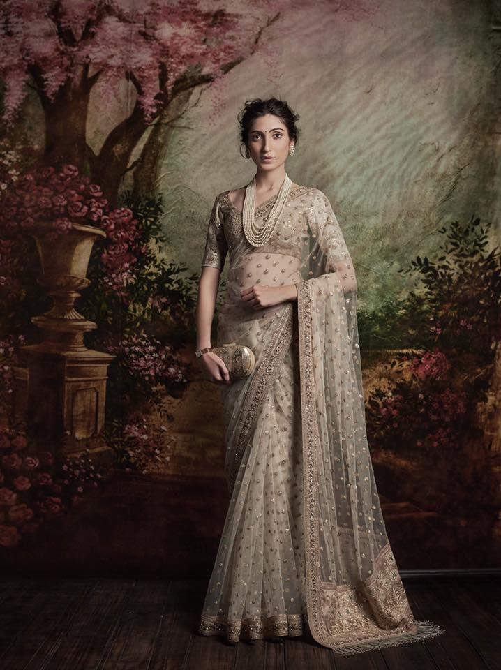 Zari Embroidered Sari