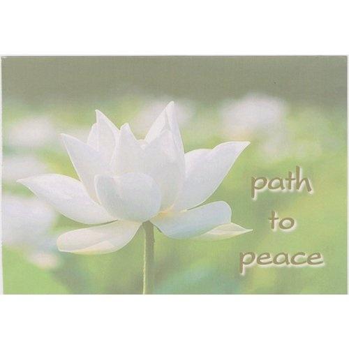 Path to Peace: Amazon.com