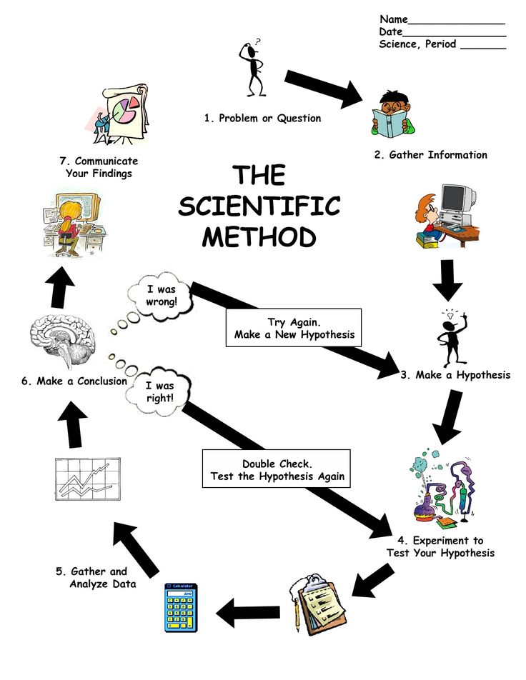 scientific method worksheet | Scientific Method Diagram