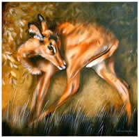 Helena Fourie - South African Artist