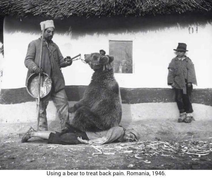 Calcatura ursului ... o preferi sau preferi un masaj Yumeiho? masajterapeutic ro