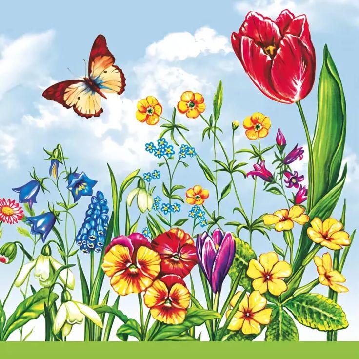 Спокойной, луговые цветы открытки