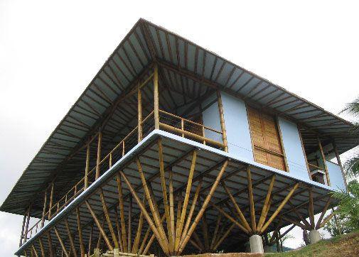 A Empresa Bambu Carbono Zero O foco da empresa é o fomento do uso do bambu na construção civil,