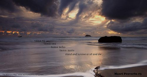 Maori Proverbs #3 Tama tu tama ora tama noho tama mate  Stand and live or sit and die  More Maori proverbs here... www.warriorteambuilding.com/proverbs