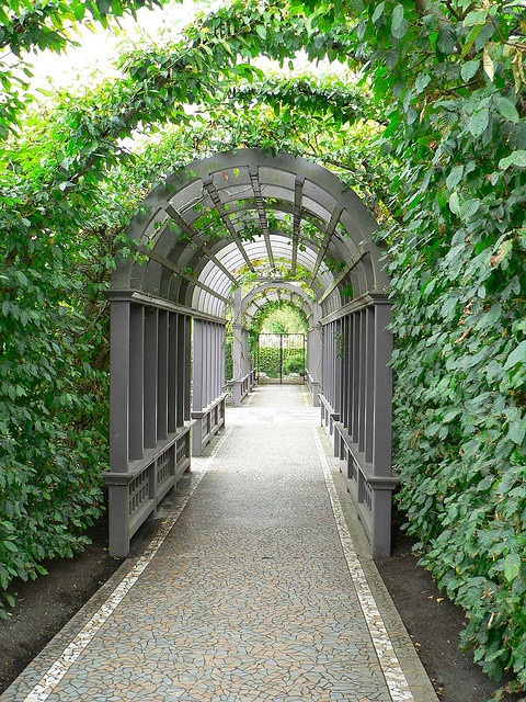 Hamilton Gardens, Hamilton, New Zealand by Sandy Austin, via Flickr  It seems I'm a sucker for a good arch, but seriously, this is beautiful.
