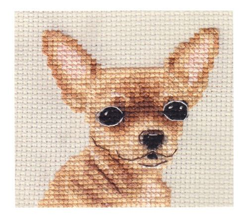 Smooth-Coated-CHIHUAHUA-dog-Complete-counted-cross-stitch-kit