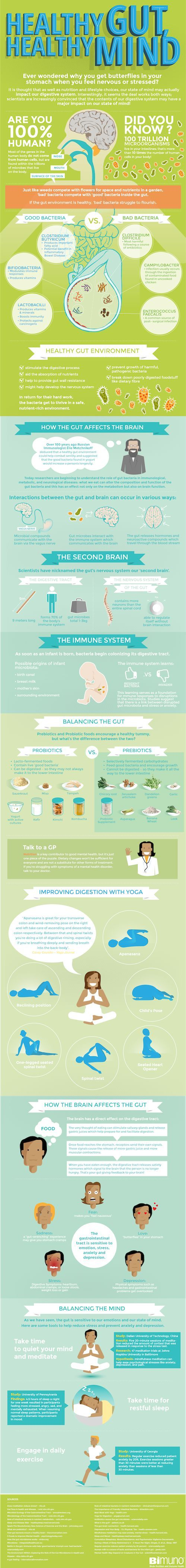 The Key to a Healthy Brain Is a Healthy Digestive System - scientists reveal strong link between gut & brain - infographic
