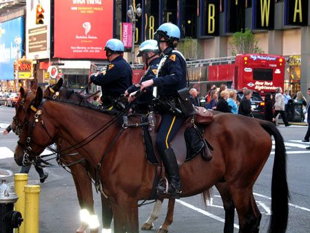 Google Image Result for http://regardinghorses.com/wp-content/uploads/2008/05/nyc-mounted-police.jpg