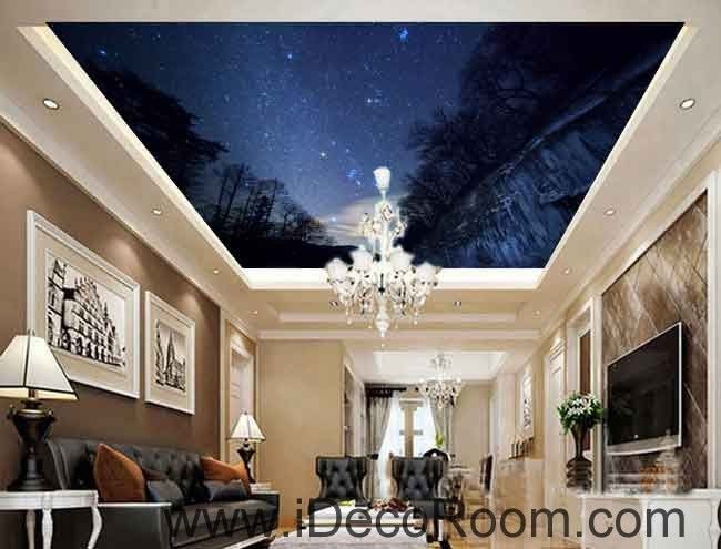 Forest Night Sky Starlight Wallpaper Wall Decals Wall Art Print Business  Kids Wall Paper Nursery Mural Part 70