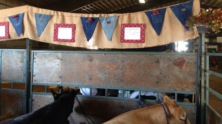 how to decorate for a county fair cattle - Google Search