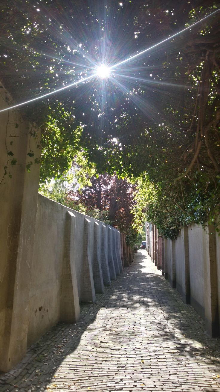 A small alley called : Vinegar Alley