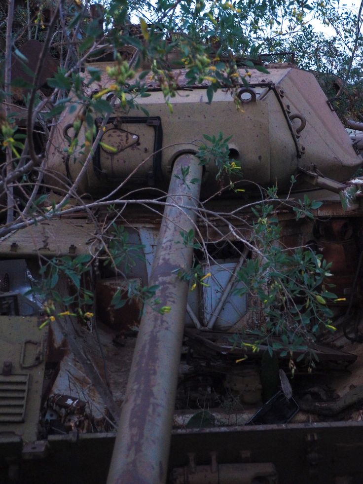 "https://flic.kr/p/NLb7FV | The ""Tank Graveyard"" Asmara, Eritrea 