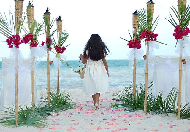 482 Best Tropical Wedding Ideas Images On Pinterest: 82 Best Elegant Beach Wedding Ideas Images On Pinterest