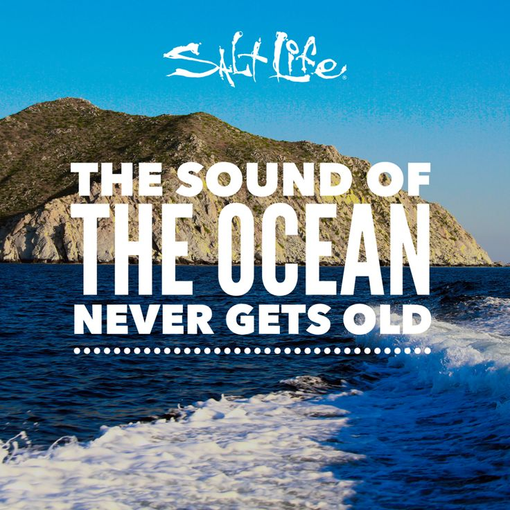 The sound of the ocean....
