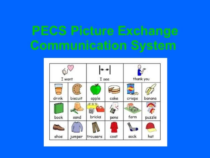 Helps describe what PECS is and what it can do Kate Ahern