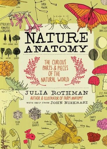 Nature Anatomy: The Curious Parts and Pieces of the Natural World by Julia Rothman.  Nature Anatomy is for anyone who appreciates and wants to explore the curiosities and beauty of the natural world in a new way. With whimsically hip illustrations by acclaimed illustrator Julia Rothman, every page is an extraordinary (and frame-worthy!) look at all kinds of subjects, including mineral formation, the inside of a volcano, what makes sunsets, monarch butterfly migration...
