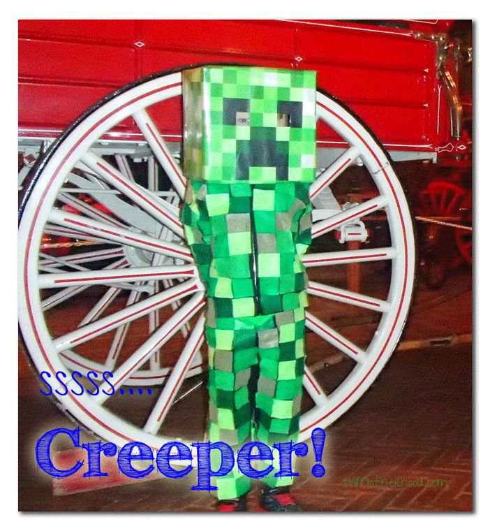 44 best Halloweenie images on Pinterest Costumes, Creeper costume - minecraft halloween costume ideas