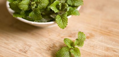 How to Extract Mint Oil From Mint Leaves