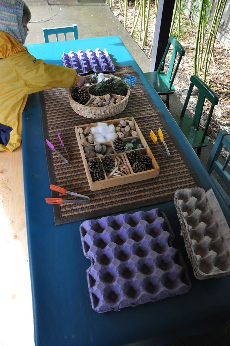 Fine motor provocation - egg cartons, tongs, natural found materials - Stumping in the Mud ≈≈