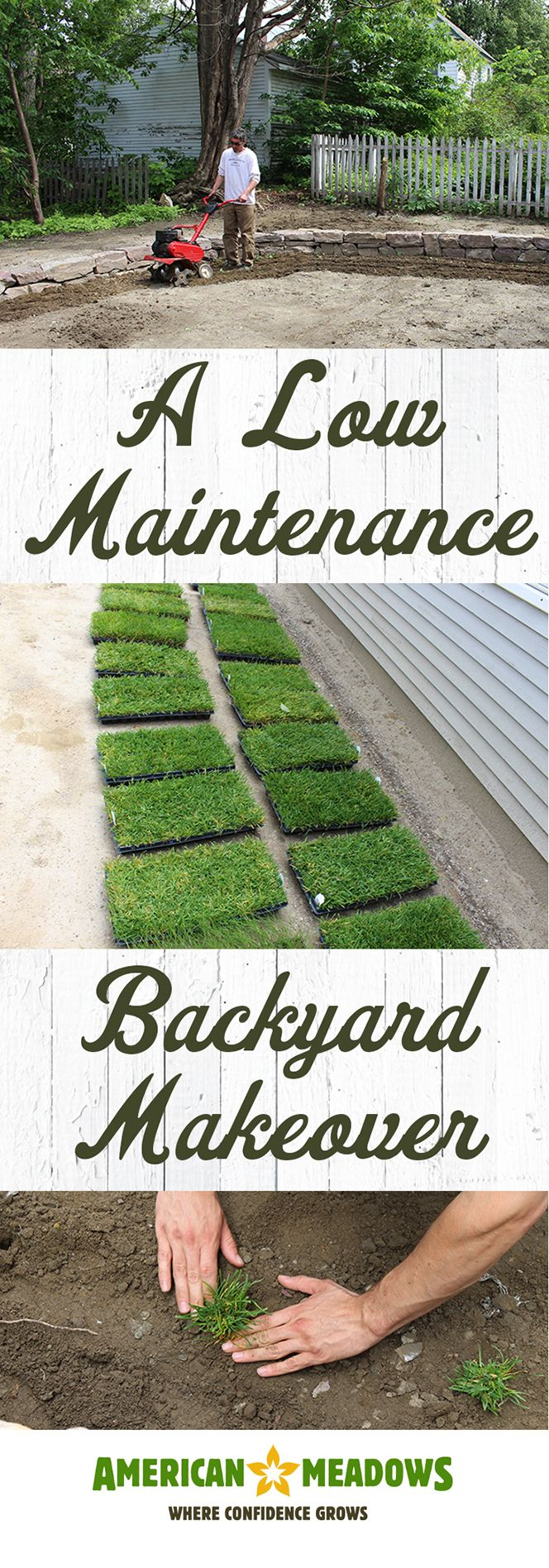 Check out this low-maintenance backyard makeover, featuring our hassle-free Low-Mow and Dog-Tuff grass plugs!