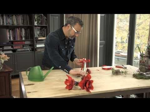 Hangende amaryllis - Green your day - I.p.v. de traditionele kerstkrans op de voordeur!