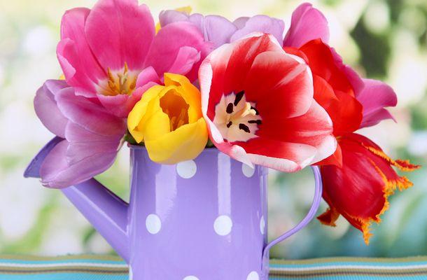 Miért vagy szerethető mások szerint? Válassz egy tavaszi virágot, és kiderül! | femina.hu