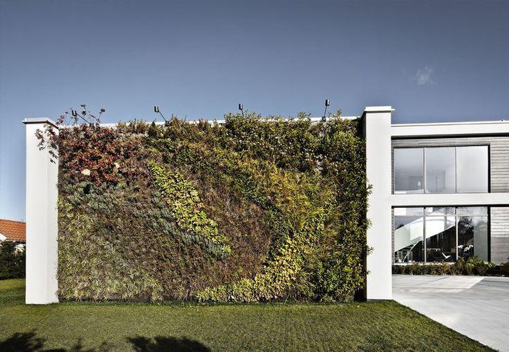#grønne#tak #grønn#vegg Interessen for grønne tage boomer