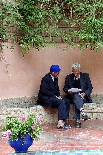 The Letter, Garden of Yves Saint Laurent, Marrakech, Morocco by HellonEarth2006,