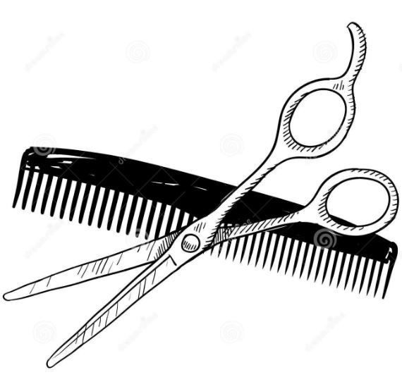 Best Dog Grooming Clippers Combs Matter
