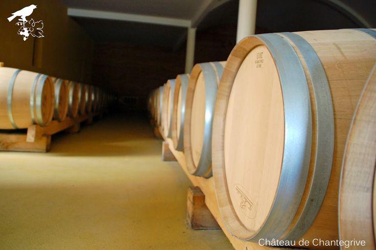 Ecosse, Irlande, USA... Whisky Chantegrive & barriques voyageuses.  Barrels & oak (wine) caroline http://my-weekly-chantegrive.blogspot.fr/