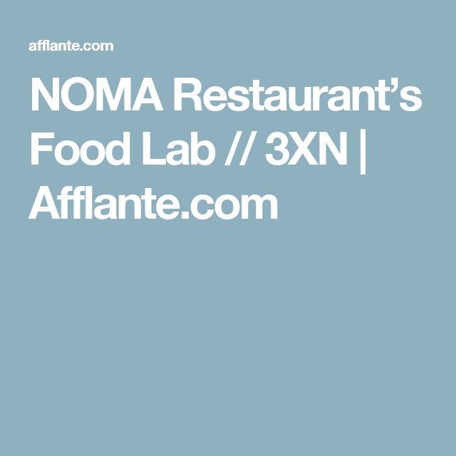 NOMA Restaurant's Food Lab // 3XN   Afflante.com