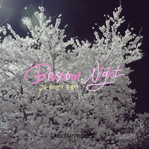 첫 앨범자켓 작업. pk헤만 x 도로시 '벚꽃, 밤' 캘리그라피 'Blossom,Night,pk헤만x도로시'