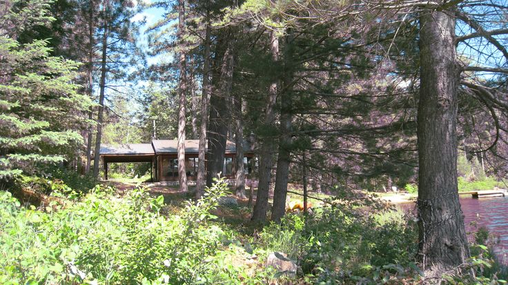 Private, Pristine, Peaceful Our Beautiful Log Cottage, nestled amongst majestic White Pine.