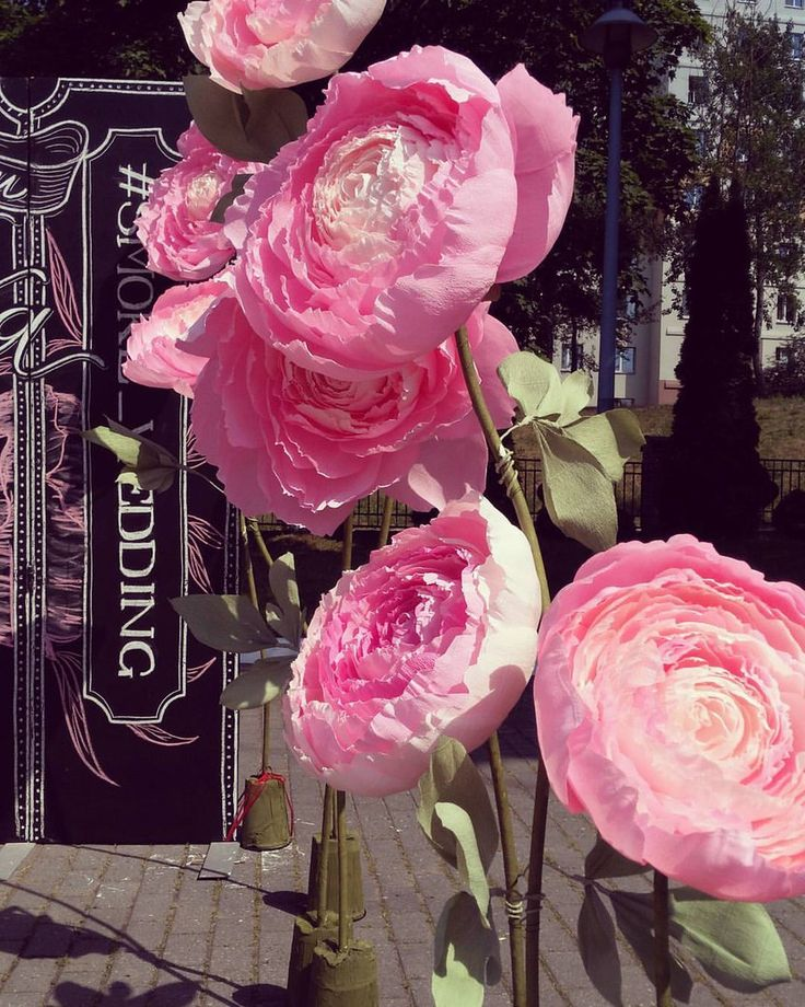 Большие бумажные цветы,гирлянды,бумажный декор | ВКонтакте