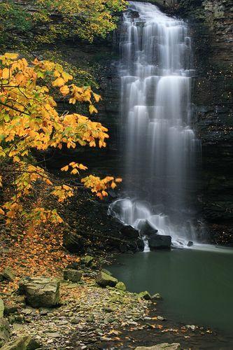 Chedoke Falls, Hamilton Conservation Authority, Ontario,  Canada