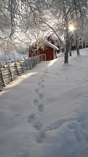 Winter in Åsens By, Småland, Sweden