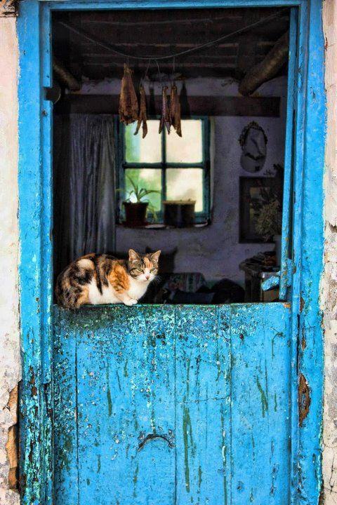 Fisherman's Cottage - Kassiesbaai - Arniston. Photo by Chantelle Hurford