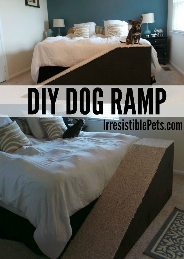 Senior dogs will love this DIY dog ramp, which helps older pups get up without placing stress on arthritic joints.