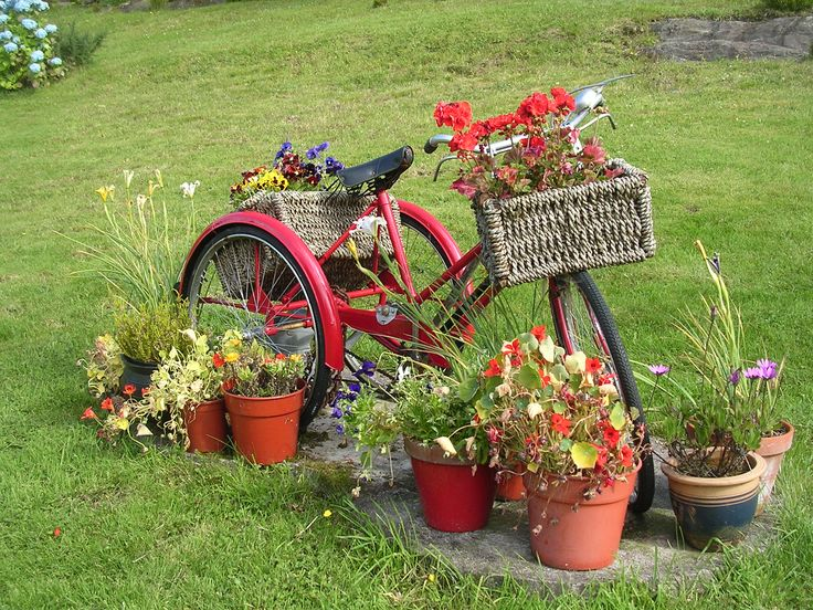something about red bike in the garden--------