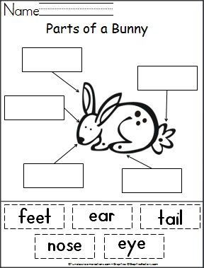 Students cut out words and paste them next to the part of a bunny that they name.  This is a wonderful free spring or Easter activity and helps with reading and fine motor skills required for cutting and pasting.