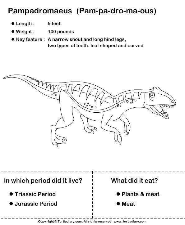 39 best images about dinosaurs on pinterest alphabetical order student centered resources and. Black Bedroom Furniture Sets. Home Design Ideas