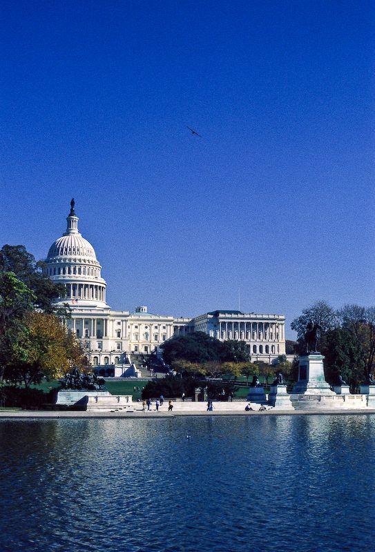 #Washington D.C