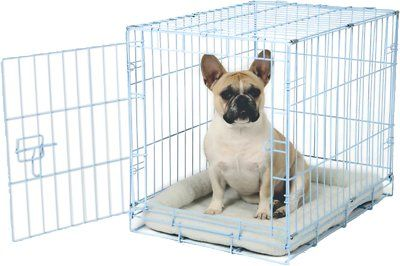 Carlson Pet Products Secure & Compact Single Door Wire Dog Crate, Blue - Chewy.com