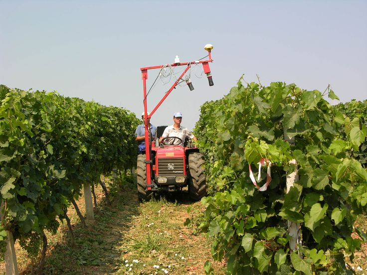 "Boutari Winery, ""Filliria Estate"", Goumenissa, Greece"