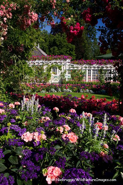 The Butchart Gardens, a National Historic Site of Canada, offers 22ha (55 acres) of stunning floral displays, Victoria, Vancouver Island, British Columbia, Canada