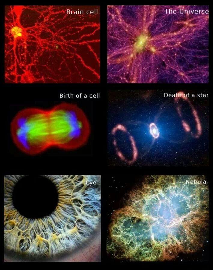 #Quantum Mechanics in the REAL World.